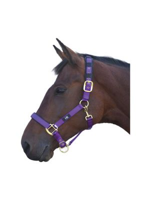 Hy Deluxe Padded Head Collar | Purple